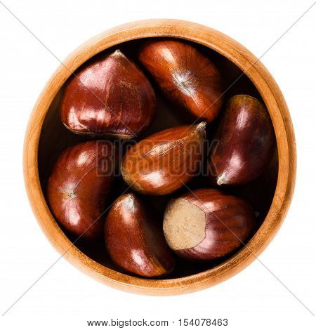 Sweet chestnuts in wooden bowl on white background. Edible seeds or nuts of Castanea sativa, also called marron and Spanish or Portuguese chestnut. Ripe brown fruits. Isolated macro food photo.