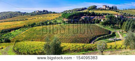 Traditional scenery of Toscana .beautiful Chianti vine region of Italy
