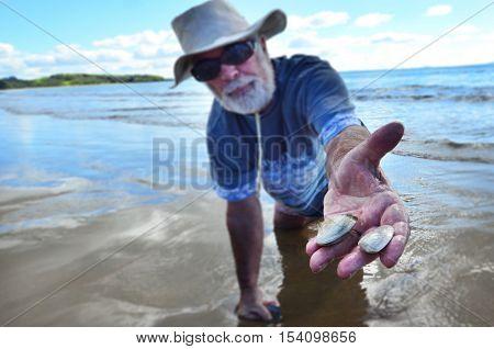 A man picks tuatua shellfish on a sandy beach in Northland New Zealand.