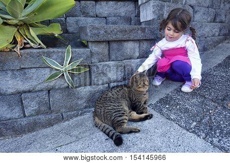 Little Girl Petting A Cat