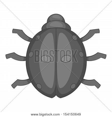 Ladybug icon. Cartoon illustration of ladybug vector icon for web