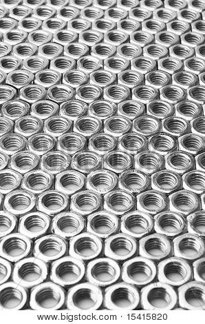 Vertical Field Arranged In Rows Of Nuts