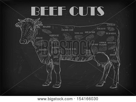 Beef cuts cut parts infographics scheme sign signboard poster butchers guide: neck chunk brisket fillet rump. Vector beautiful horizontal closeup white outline black background