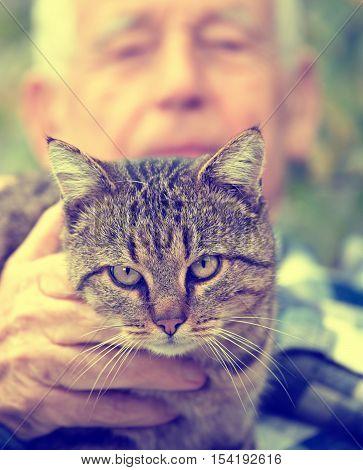 Cat In Old Man's Lap