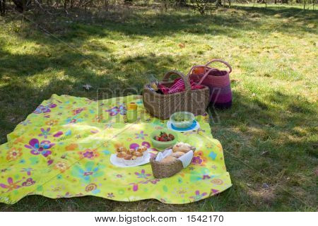 Ready For The Picnic