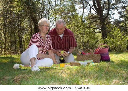 Having A Picnic