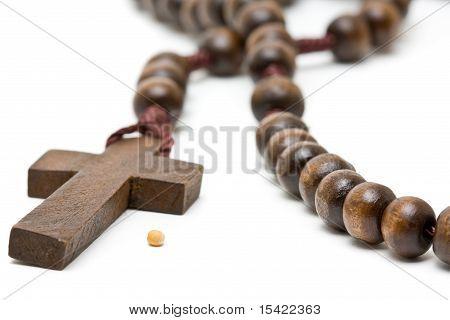 Mustard Seed - Symbol Of Faith