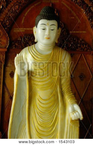International Buddha Statue