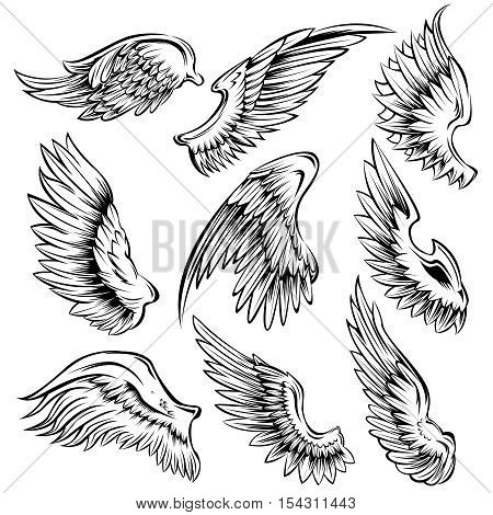 Set of black white bird wings of different shape in open position isolated vector illustration