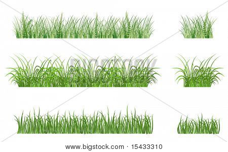 Green grass elements. Vector version also available in gallery