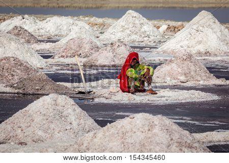 SAMBHAR, INDIA - NOVEMBER 19, 2012: Woman mining salt at lake Sambhar, Rajasthan, India. Sambhar Salt Lake is India's largest inland salt lake