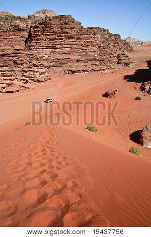 Safari In Desert. Jordan