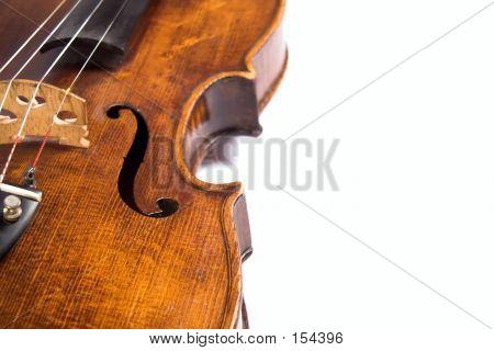 Violin Ribs