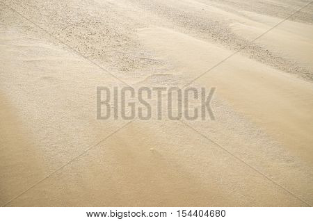 background of sand on a windy north sea beach