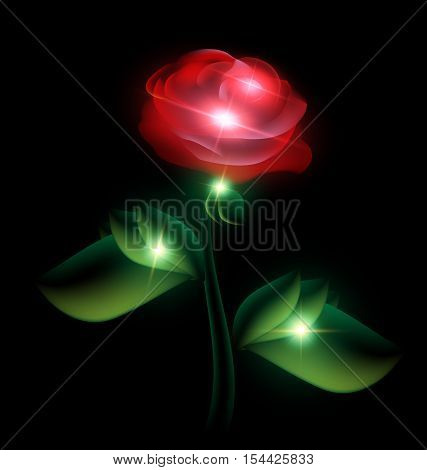 black background and red-colored fantasy translucent flower