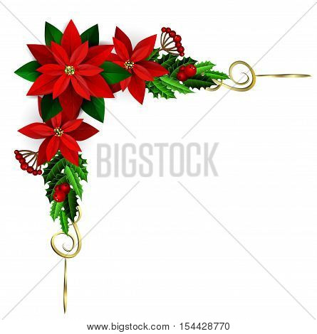 Christmas corner decoration with evergreen treess golden swirls and poinsettia isolated
