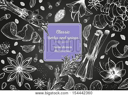 Spice and herbs top view frame. Spice and herbs design. Chalkboard background. Vintage hand drawn sketch vector illustration. Vector Design template.