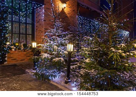 Christmas yard decoration. Christmas yard with natural Christmas trees decorated with blue garlands and street lamps near the house.