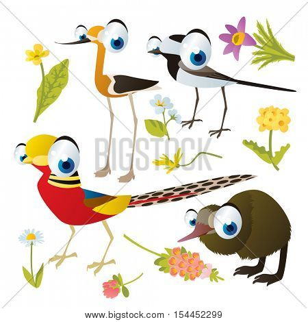 vector cute colorful cartoon isolated birds and flowers illustrations collection: wagtail, pheasant, kiwi, piper