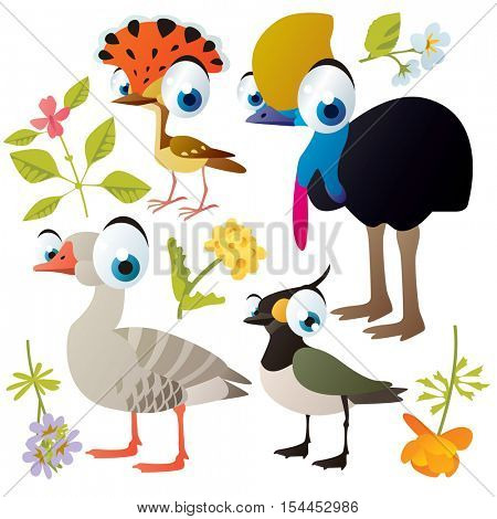 vector cute colorful cartoon isolated birds and flowers illustrations collection: cassowary, flycatcher, goose, peewit
