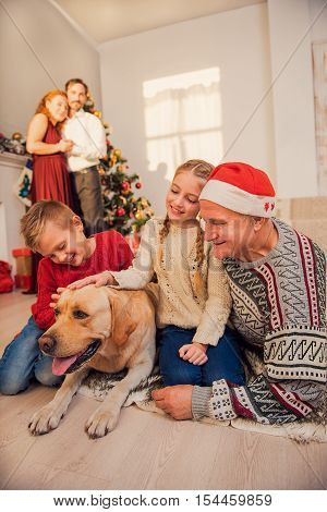 Children and grandfather are sitting on floor and stroking dog. Father and mother are looking at them with happiness and smiling. They are standing near Christmas tree and embracing