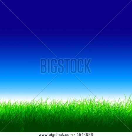 Ultra-Blue Sky With Green Grass Land