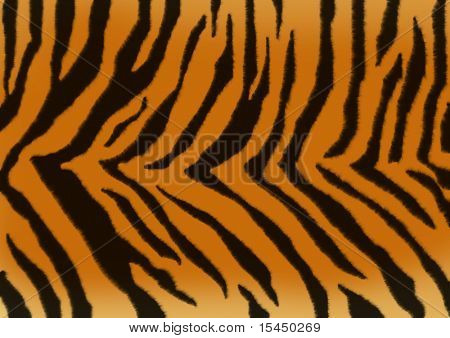 Texture for a background - a fluffy skin of a tiger