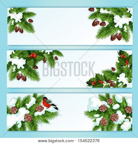 Christmas tree and holly berry festive banner set with snowy holly, fir and pine branches with red berry, bullfinch and pinecone. Winter holiday decoration, New Year label design