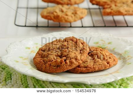 Fresh baked oatmeal raisin walnut cookies on pretty plate with cookies cooling on rack in background. Shot in natural light in horizontal format.