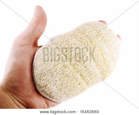 Bast On Hand