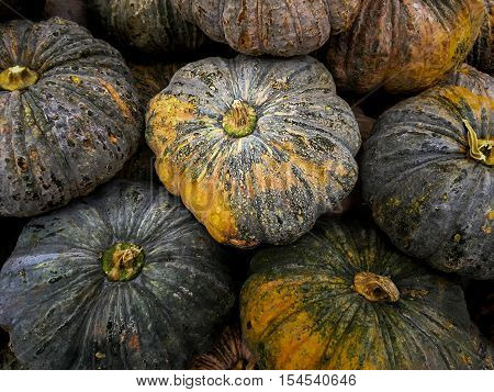Heap of Thai grown pumpkins on retail display. These pumpkins are yellow inside. They are very soft. Thai love make sweet dessert out of these pumpkins. Pumpkins soup is also another favorite menu.