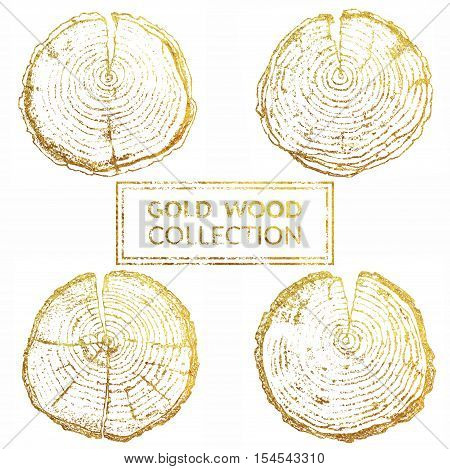 Hand drawn wood round split set isolated on white backdrop. Set of hand drawn wood splits with rings for your design isolated on white backdrop