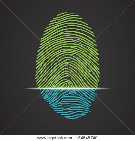 Fingerprint identification with whorls. Vector illustration isolated on black background, eps 10.