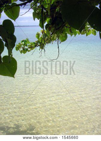 Pangaimotu Escape 3, Tonga