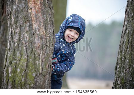 Adorable little boy playing hide and seek hiding behind a tree trunk in the green autumn park forest