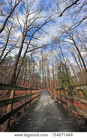 Wooden walking bridge in a forest in the Appalachian mountains during Autumn with fall colors