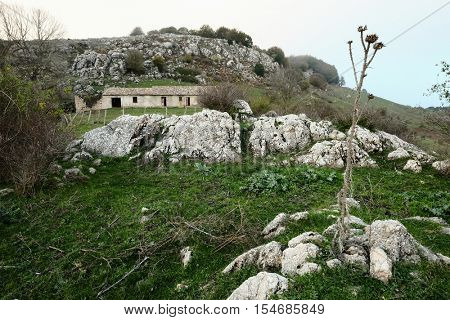 rural landscape with abandoned farmhouse and dried milk thistle in Nebrodi Park, Sicily