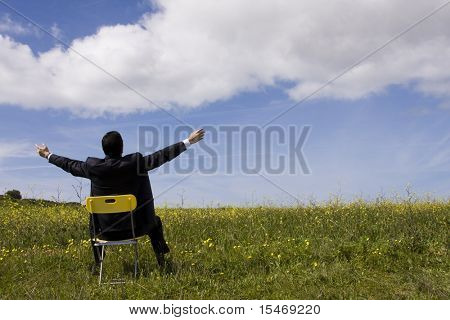 Businessman with his arms outstretched on a field with a blue sky