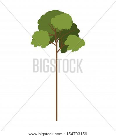 silhouette tree with leafy branches model eight vector illustration