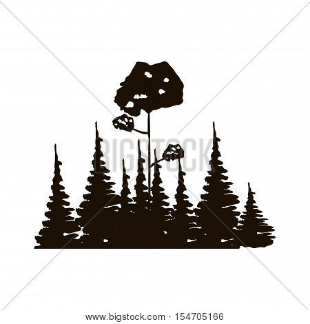 monochrome forest with pines and leafy tree vector illustration