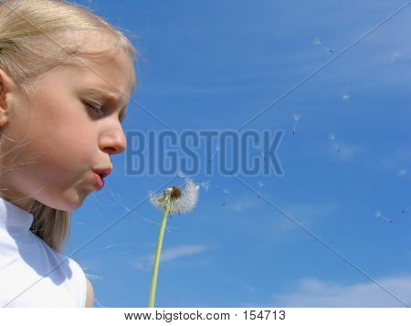 Little Girl Blows On Dandelion