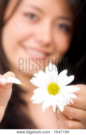 Girl With Daisy - Loves Me Not