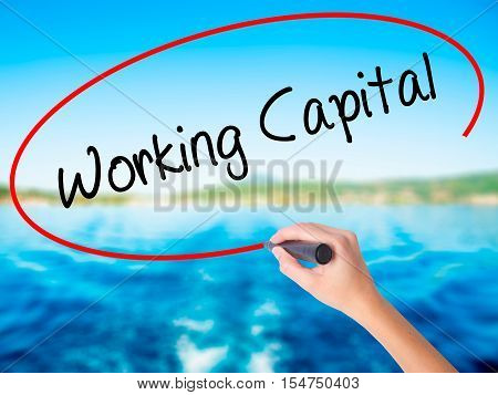 Woman Hand Writing Working Capital With A Marker Over Transparent Board