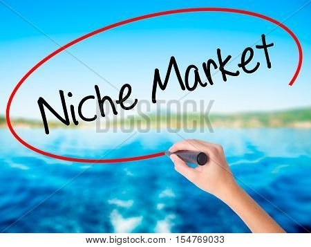 Woman Hand Writing Niche Market With A Marker Over Transparent Board.