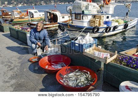 Istanbul Turkey - March 18 2013: Istanbul at the Bosphorus bonito bluefish mackerel sardines sea bass and other bottom fish hunt. Migration time increases in fishing catch fish.