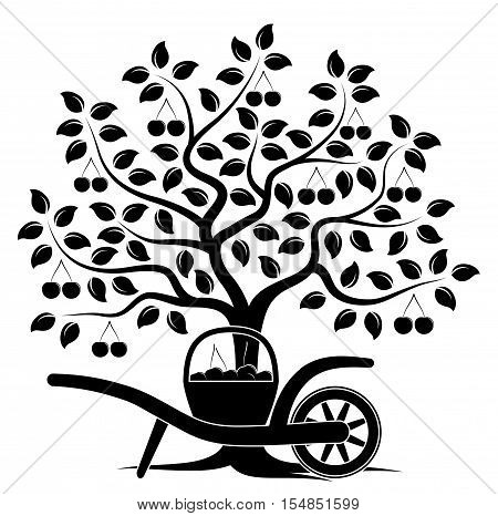 vector cherry tree and hand barrow with basket of cherries isolated on white background