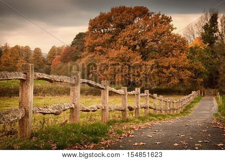Countryside path and an old rustic countryside fence in Autumn