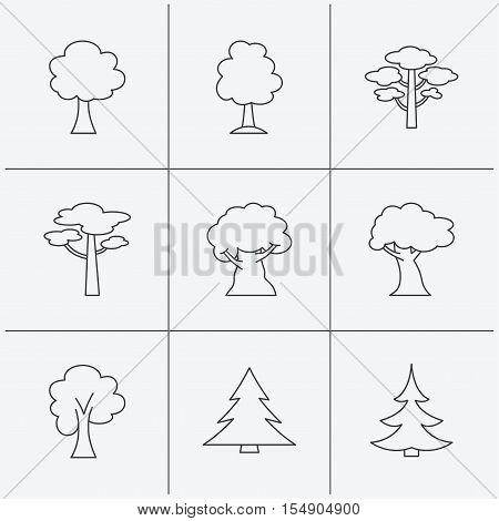 Pine tree, maple and oak icons. Christmas trees linear signs. Forest trees flat line icons. Linear icons on white background. Vector
