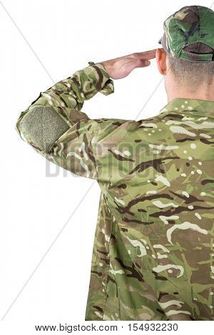 Rear view of soldier saluting on white background
