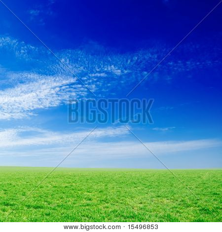 green field and beautiful white clouds